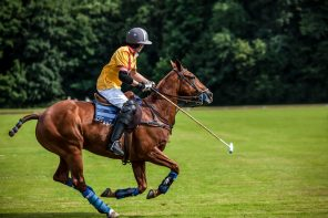 Polo & Country Fair Putten, 1 & 2 september