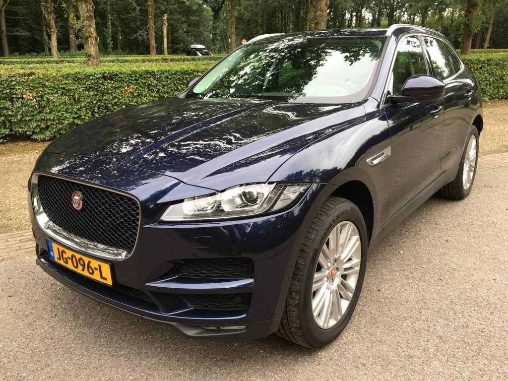 FPace1