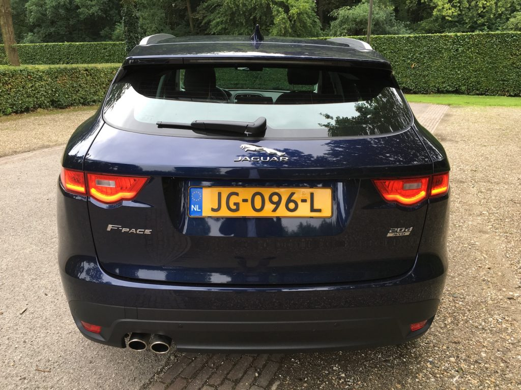 FPace6