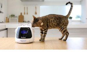 Ook uw huisdier gaat nu digitaal