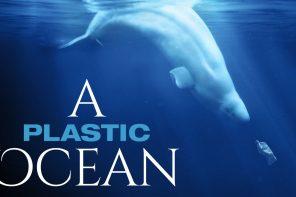 A Plastic Ocean, 21 juni, Amsterdam RAI, alleen voor scholen