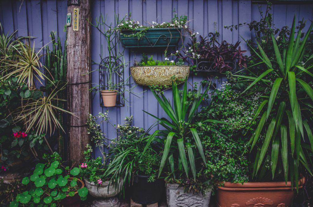planten-ophangen-tuin