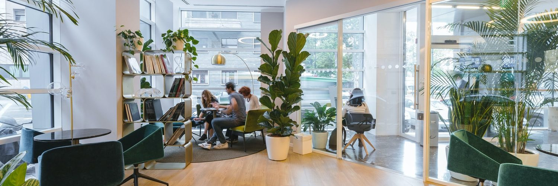kantoor-planten-licht