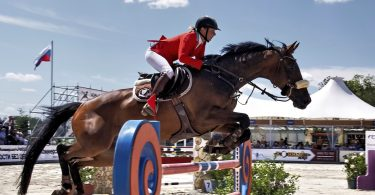 jockey-donker-bruin-paard-sprong