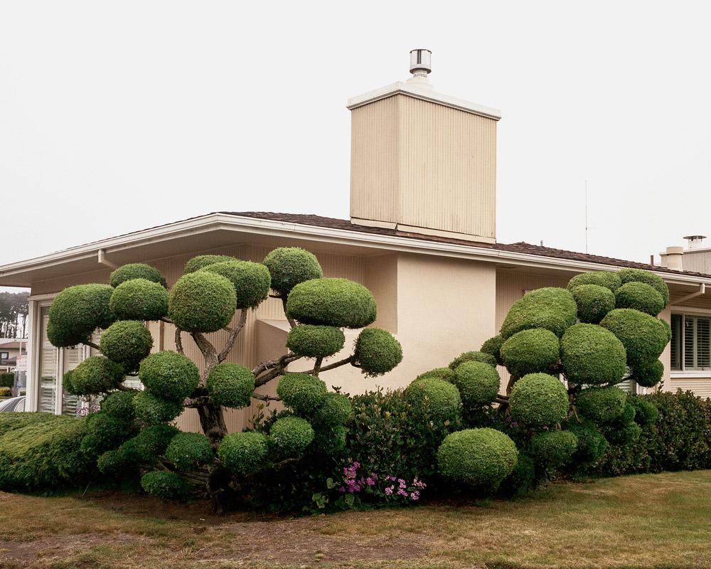 california-topiaries-marc-alcock-10