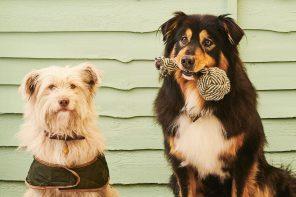 Outdoor-look voor baas en hond